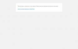 Page screenshot: WordPress › Error