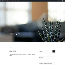 Page screenshot: Test site | Just another WordPress site