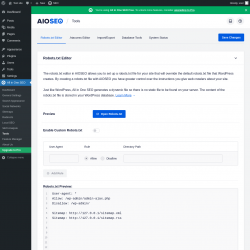 Page screenshot: All in One SEO → Tools