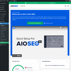 Page screenshot: All in One SEO