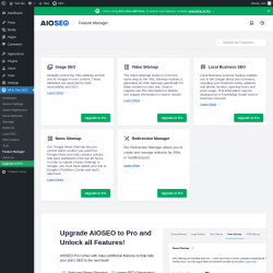 Page screenshot: All in One SEO → Feature Manager