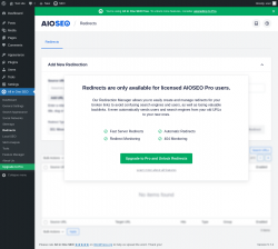 Page screenshot: All in One SEO → Redirects