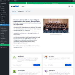 Page screenshot: All in One SEO → About Us