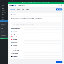 Page screenshot: All in One SEO → Social Networks