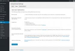 Page screenshot: Settings  → Autoptimize → Extra
