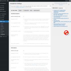 Page screenshot: Settings → Autoptimize