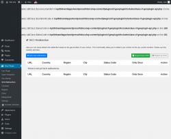 Page screenshot: Geo Plugin → SEO Redirection