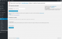 Page screenshot: Anti-Spam by CleanTalk settings ‹ Test site — WordPress