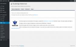 Page screenshot: Settings → Cloudbridge Mattermost → About