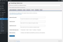 Page screenshot: Settings → Cloudbridge Mattermost → OAuth2