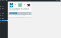 Page screenshot: Easy Social Feed ‹ Test site — WordPress