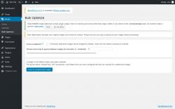 Page screenshot: Media → Bulk Optimize