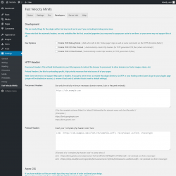 Page screenshot: Settings  → Fast Velocity Minify → Developers