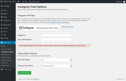 Page screenshot: Feed Them → Instagram Options