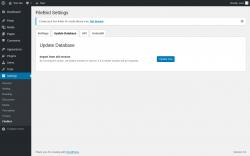 Page screenshot: Settings → FileBird → Update Database