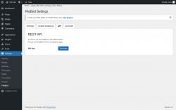 Page screenshot: Settings → FileBird → API
