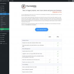 Page screenshot: Formidable → Upgrade