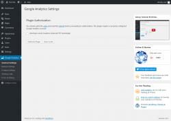 Page screenshot: Google Analytics