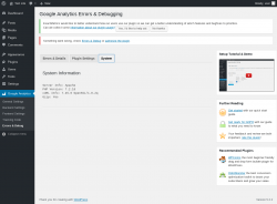 Page screenshot: Google Analytics → Errors & Debug → System