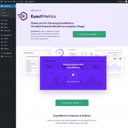 Page screenshot: Welcome to ExactMetrics ‹ Test site — WordPress