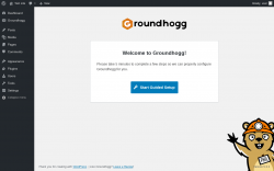 Page screenshot: Guided Setup ‹ Test site — WordPress
