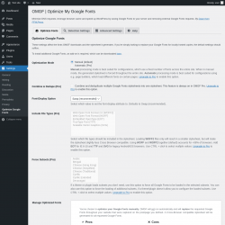 Page screenshot: Settings → Optimize Google Fonts