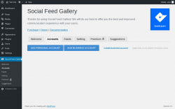 Page screenshot: Social Feed Gallery → Accounts