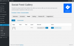 Page screenshot: Social Feed Gallery → Feeds