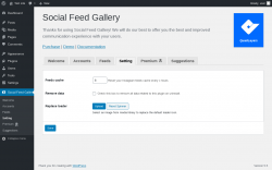 Page screenshot: Social Feed Gallery → Setting