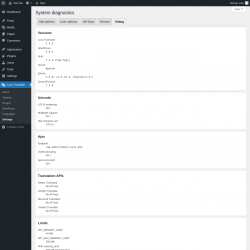 Page screenshot: Loco Translate → Settings →              Debug