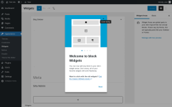 Page screenshot: Widgets ‹ Test site — WordPress