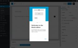 Page screenshot: Add New Post ‹ Test site — WordPress