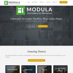 Page screenshot: Modula → Upgrade