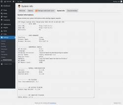 Page screenshot: Settings → Nimble Builder → System info
