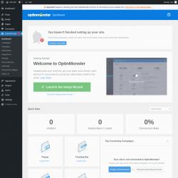 Page screenshot: OptinMonster