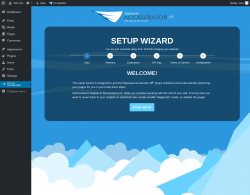 Page screenshot: Pegasaas Accelerator: Overview ‹ Test site — WordPress