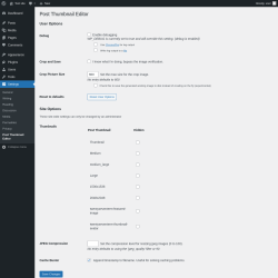 Page screenshot: Settings  → Post Thumbnail Editor
