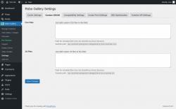 Page screenshot: Robo Gallery → Settings →      Custom JS\CSS