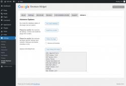 Page screenshot: Settings → Google Reviews Widget → Advance