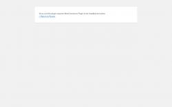 Page screenshot: WordPress › Error