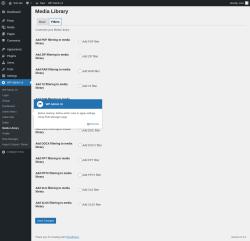 Page screenshot: WP Admin UI → Media Library → Filters