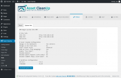 Page screenshot: Asset CleanUp → Tools → System Info