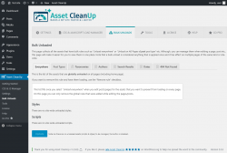 Page screenshot: Asset CleanUp → Bulk Unloads