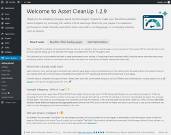 Page screenshot: Asset CleanUp ‹ Test site — WordPress