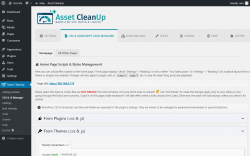 Page screenshot: Asset CleanUp → CSS & JS Manager