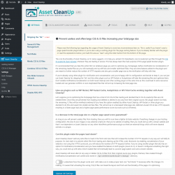 Page screenshot: Settings → Asset CleanUp