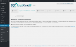 Page screenshot: Asset CleanUp → CSS/JS Load Manager