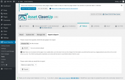 Page screenshot: Asset CleanUp → Tools → Import & Export