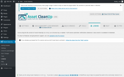 Page screenshot: Asset CleanUp → License