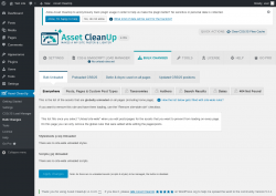 Page screenshot: Asset CleanUp → Bulk Changes